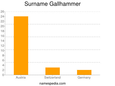 Surname Gallhammer