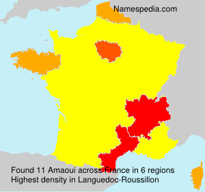 Surname Amaoui in France