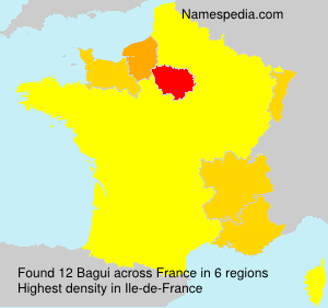 Surname Bagui in France