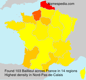 Surname Baillieul in France