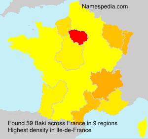 Surname Baki in France