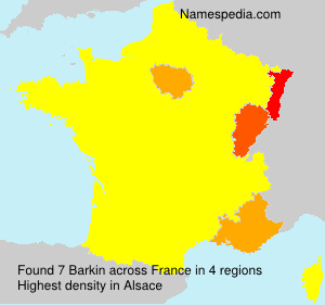 Surname Barkin in France