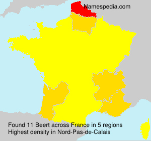 Surname Beert in France