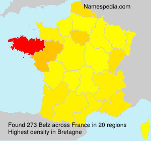 Surname Belz in France