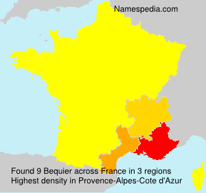 Surname Bequier in France