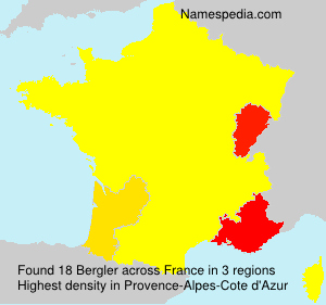 Surname Bergler in France