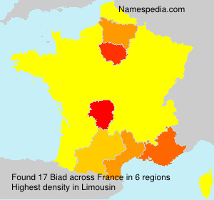 Surname Biad in France