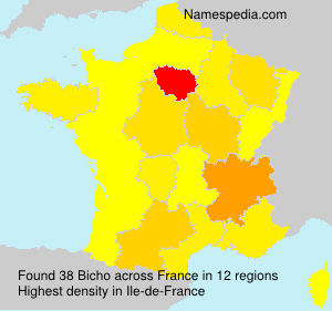 Surname Bicho in France