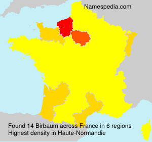 Surname Birbaum in France