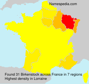 Surname Birkenstock in France