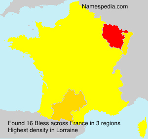 Surname Bless in France
