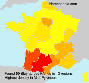 Surname Bloy in France