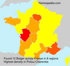 Surname Bolger in France