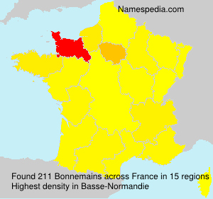 Surname Bonnemains in France