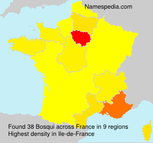 Surname Bosqui in France