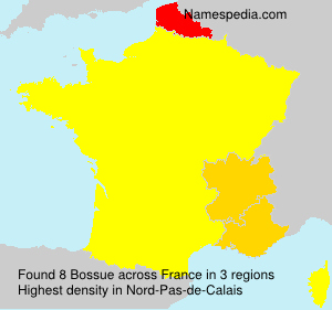 Surname Bossue in France