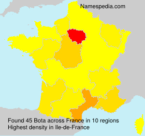 Surname Bota in France
