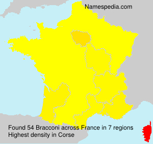 Surname Bracconi in France