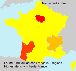 Surname Brikoui in France