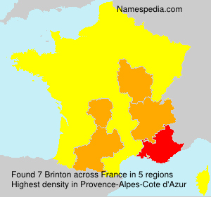Surname Brinton in France