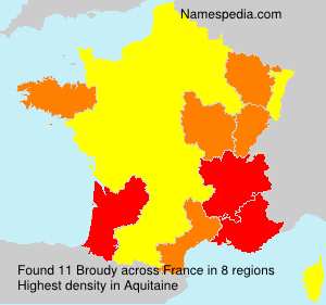 Surname Broudy in France
