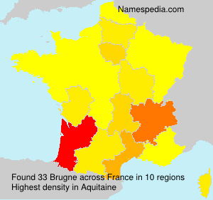 Surname Brugne in France