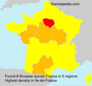 Surname Brussee in France