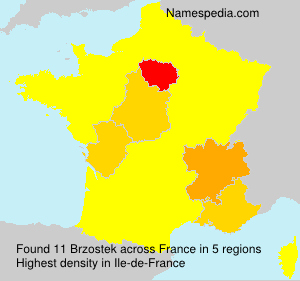 Surname Brzostek in France