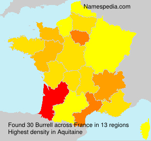 Surname Burrell in France