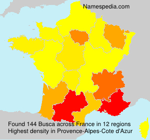 Surname Busca in France