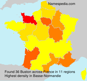 Surname Buston in France