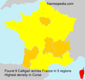 Surname Calligari in France