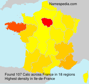 Surname Calo in France