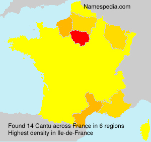Surname Cantu in France
