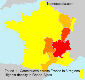 Surname Castelnuovo in France