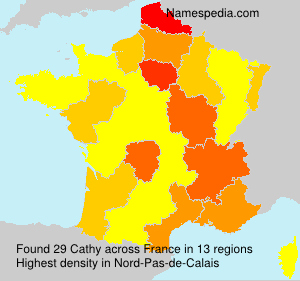 Surname Cathy in France