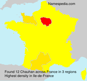 Surname Chauhan in France