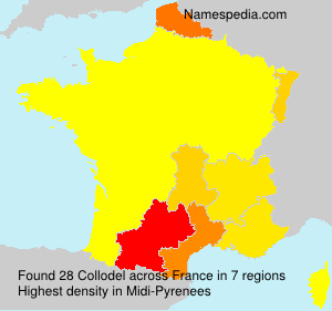 Surname Collodel in France