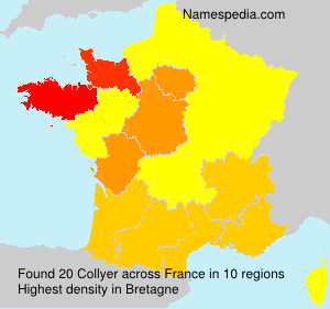 Surname Collyer in France