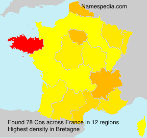 Surname Cos in France