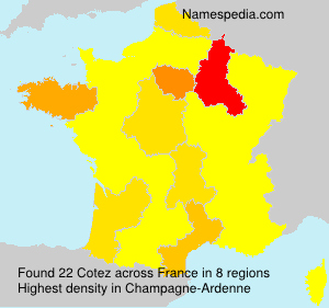 Surname Cotez in France