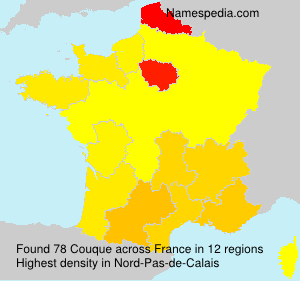 Surname Couque in France