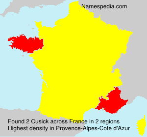 Surname Cusick in France