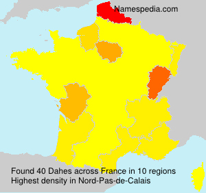 Surname Dahes in France