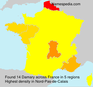 Surname Damary in France