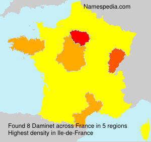 Surname Daminet in France