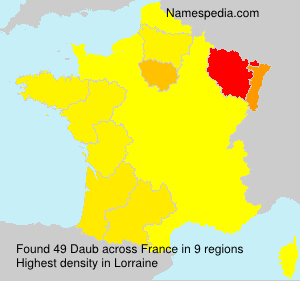 Surname Daub in France