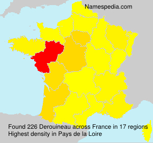 Surname Derouineau in France