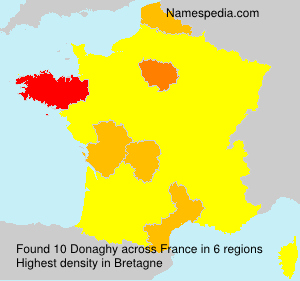 Surname Donaghy in France