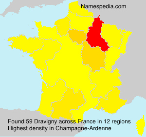 Surname Dravigny in France